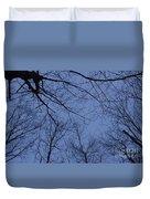 Winter Blue Sky Duvet Cover