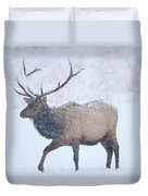 Winter Bull Duvet Cover by Mike  Dawson