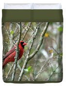 Winter Cardinal Sits On Tree Branch Duvet Cover