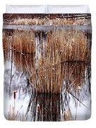 Winter Cattails Duvet Cover