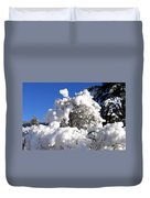 Winter Cotton Duvet Cover