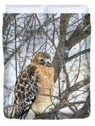 Winter Hawk Duvet Cover
