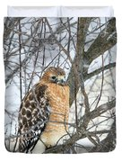 Winter Hawk Duvet Cover