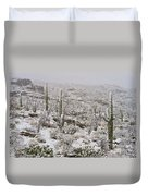 Winter In The Desert Duvet Cover