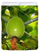 Winter Melon In Garden 2 Duvet Cover