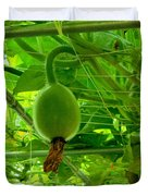 Winter Melon In Garden 3 Duvet Cover