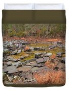 Winter Morning On Marble Creek 1 Duvet Cover