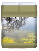 Winter Pond Reflections Duvet Cover