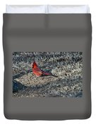 Winter Redbird Duvet Cover
