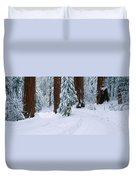 Winter Road Into Sequoia National Park Duvet Cover