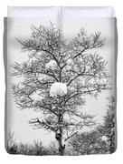 Winter Solace Duvet Cover