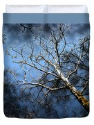 Winter Sycamore Duvet Cover