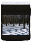 Winter Trees In Snow With Shadow Lines Duvet Cover