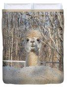 Winter White Alpaca Duvet Cover