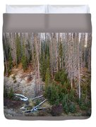 Wolf Creek Pass Forest Landscape Duvet Cover