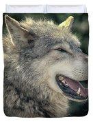 Wolf Rock Duvet Cover