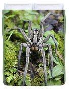 Wolf Spider Hogna Sp Male, Mindo Duvet Cover