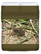Wolf Spider With Babies Duvet Cover