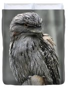 Wonderful Patterned Feathers On A Tawny Frogmouth Bird Duvet Cover