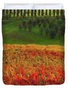 Wonderful Tuscany, Italy - 07  Duvet Cover