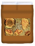 Insect Hotel #2 Duvet Cover
