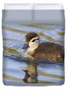 Wood Duck Duckling Swimming Santa Cruz Duvet Cover by Sebastian Kennerknecht