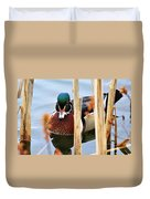 Wood Duck In The Reeds Duvet Cover