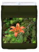 Wood Lily Also Called Prairie Lily Or Western Red Lily Duvet Cover