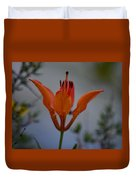 Wood Lily With Lake Superior In Background Duvet Cover