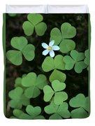 Wood Sorrel Flower Duvet Cover