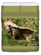 Woodchuck Ready For Spring Duvet Cover