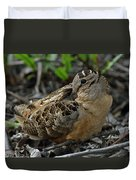 Woodcock At Rest Duvet Cover