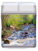 Woodland Stream And Waterfall, Hickory Run, Pocono Mountains Duvet Cover