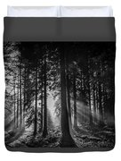 Woodland Walks Silver Rays B/w Duvet Cover