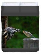 Woodpecker Feeding Bluebird Duvet Cover