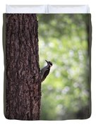 Woodpecker In New Mexico Duvet Cover