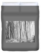 Woods In Mist, Stagshaw Common Duvet Cover
