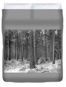Woods In Winter, Slaley Duvet Cover