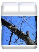 Woody Woodpecker Duvet Cover
