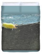 Wooly Worm In Shiloh, Tn Duvet Cover