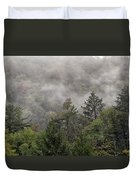 Worlds End State Park Fog Duvet Cover