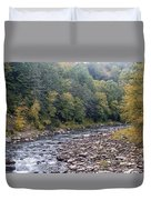 Worlds End State Park Loyalsock Creek Duvet Cover