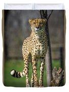 World's Fastest Land Animal Duvet Cover
