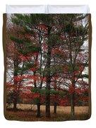 Xmas Colors  Duvet Cover