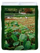 Yams Farm In Azores Duvet Cover
