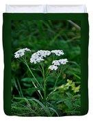 Yarrow Flowerheads Duvet Cover