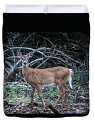 Yearling Fawn Duvet Cover