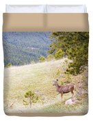 Yearling Mule Deer In The Pike National Forest Duvet Cover