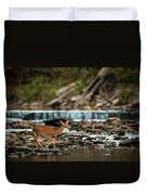 Yearling On Indian Creek Duvet Cover