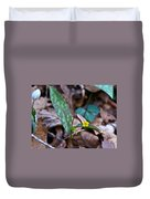 Yelllow Trout Lily 1 Duvet Cover